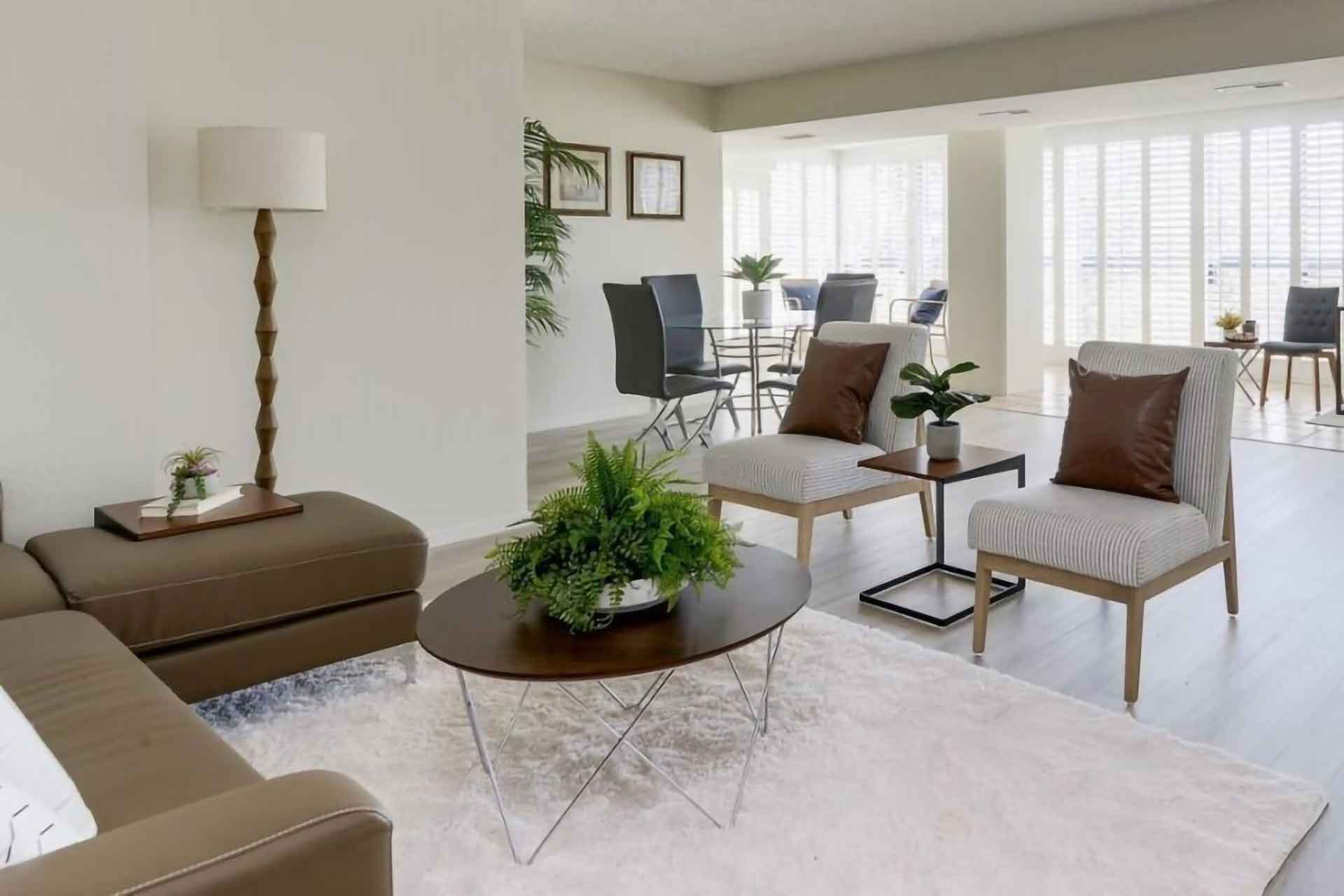 san mateo home staging